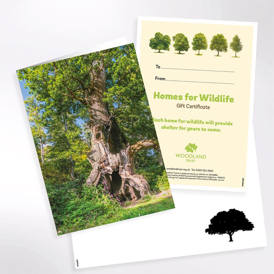 Woodland Trust Eco-friendly Gift Ideas